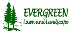 evergreen lawn and landscape
