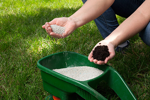 lawn fertilization treatments