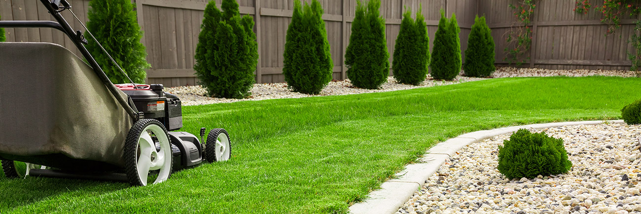 lawn care landscaping denton tx